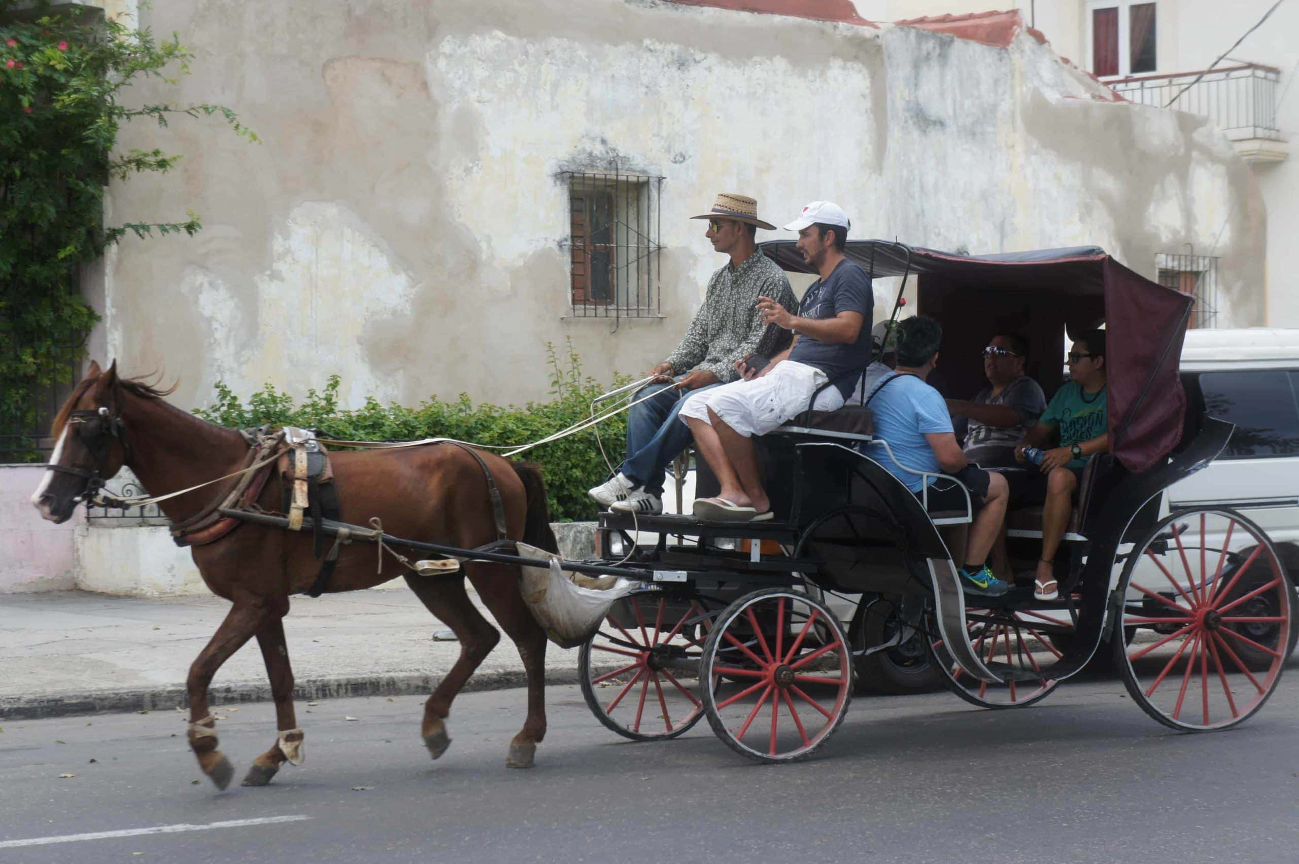 Guanabo horse carriage