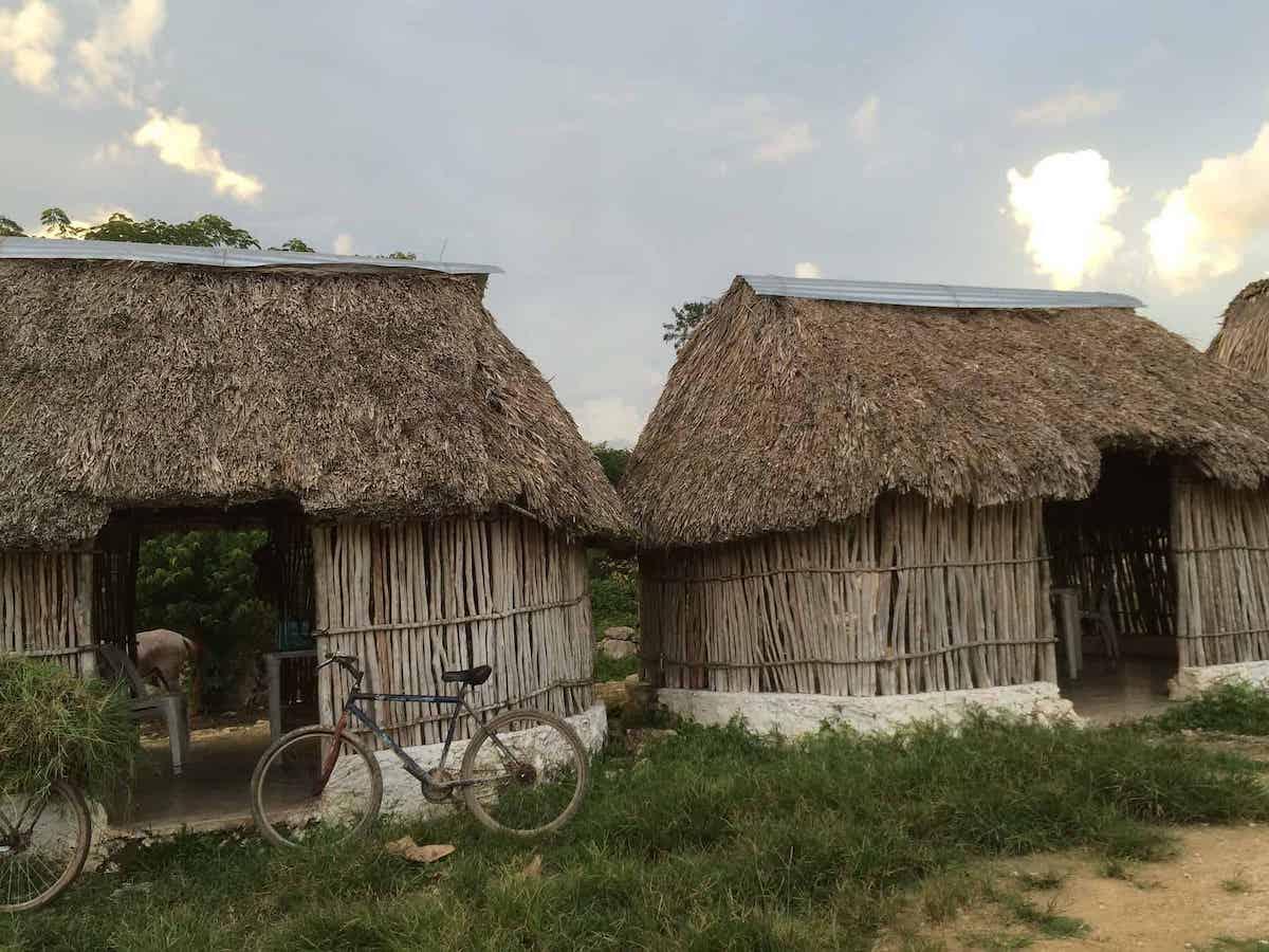 Mayan village huts