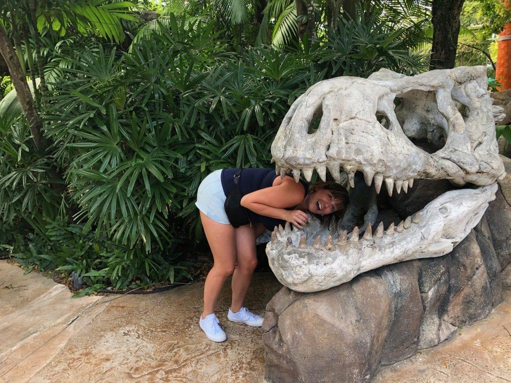 Universal Stuidos Jurassic Park